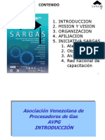 267786508-Asociacion-Venezolana-de-Procesadores-de-Gas.pdf