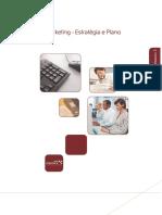 E- Marketing - Estratégia e Plano.pdf