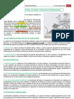 4.1. DIVERSIDAD BIOGEOGRÁFICA. FACTORES, CARACTERISTICAS Y FORMACIONES