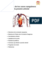 Fisiología de los vasos sanguíneos y la presión arterialdsa