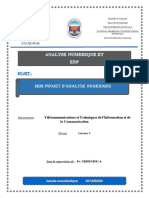 Projet Analyse Numérique version 2