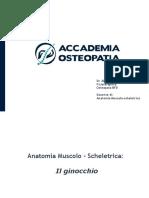 PROF.-LORUSSO-ANATOMIA-MUSCOLO-SCHELETRICA_IL-GINOCCHIO