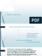 PROF.SSA-DECATALDO-ISTOLOGIA-5-ULTIMO