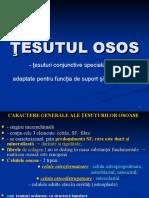 2012-tesutul-osos.ppt