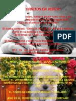 cachorritos en venta