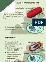 typesofcellsnotes-ppt-150909133142-lva1-app6892