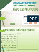APARATO RESPIRATORIOimegenes.pdf