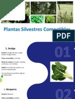 Plantas Comestibles.pdf