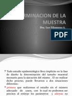 DETERMINACION DE LA MUESTRA