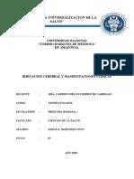 Irrigacion Cerebral y Manifestaciones Clinicas Isquemia Hemorragia