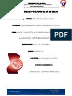 Mapas Conceptuales sobre Hemorragia de la segunda mitad del embarazo.pdf