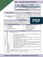 Agosto - 03 Planeación Educación Física (2019-2020) (1)