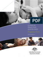 pregnancy-care-guidelines_0.pdf