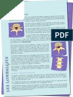 information sur les lombalgies