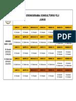 CRONOGRAMA FLU (Autoguardado)