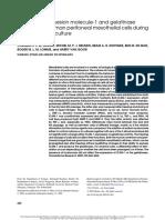 Intercellular adhesion molecule-1 and gelatinase