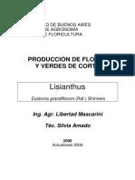 Cultivo de Lisianthus para corte_09