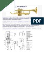 La trompeta es un instrumento de boquilla en forma de taza.docx
