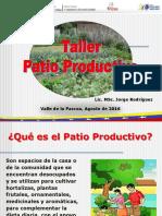 tallerpatiosproductivos23-08-2016-160916195800