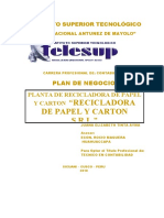 Plan de negocio. PAPEL Y CARTON (1).docx