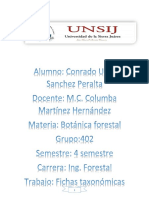 taxonomia-convertido.pdf