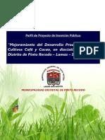 Resumen Cacao y Café _ Pinto Recodo_07-0