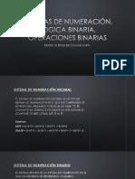 Logica BInaria.pdf