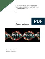 acidos nucleicos(falta por terminar)