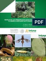 Plagasmango-Mochis2015.pdf
