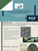 Diapositivas de articulo cientifico - Fermentacion