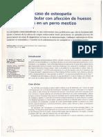 Un caso de osteopatía craneomandibular con ... - DDD – UAB
