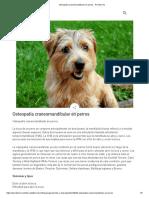Osteopatía craneomandibular en perros - Perritos HC