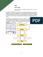 Alteraciones del ciclo mestrual corregido ALIZON