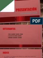 3ra exposicion gestion (1).pptx