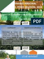prog-nac-cafe-XXVII Seminario Regional Perez Zeledon 2016 MG CICAFE