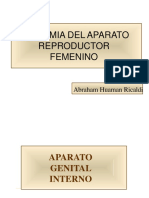 anatomia-genital-femenino.pdf