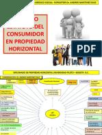 1_ESTATUTO_DEL_CONSUMIDOR_U_PILOTO_PDF_2014