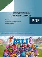 Capacitación Organizacional.pptx