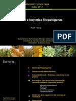 Resistencia a bacterias fitopatógenas.pdf