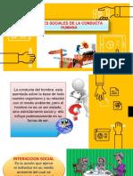 4. BASES SOCIALES DE LA CONDUCTA