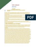 El Cuidado al Medio Ambiente.doc