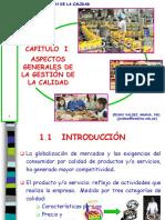 CAPITULO I. ASPECTOS GENERALES GESTIÓN CALIDAD