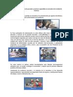 Valeria Martinez Anton Analisis de Evaluación Microbiológica de Pescados y Mariscos Expendidos en Mercados de La Ciudad de Huánuco