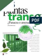 PlantasGM panacea o amenaza