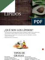 lípidos 3
