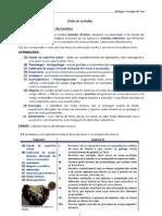 Ficha+de+trabalho+-+Métodos+estudo+interior+geosfera