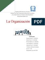 Ensayo Organizacion