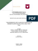 Proyecto 2 Aplicación Tecnológica (Bravo-Vilches-Zavala).pdf