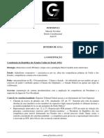 Roteiro de aula - aula 04 - A Constituição