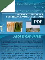 labores culturales del esparrago1.ppt